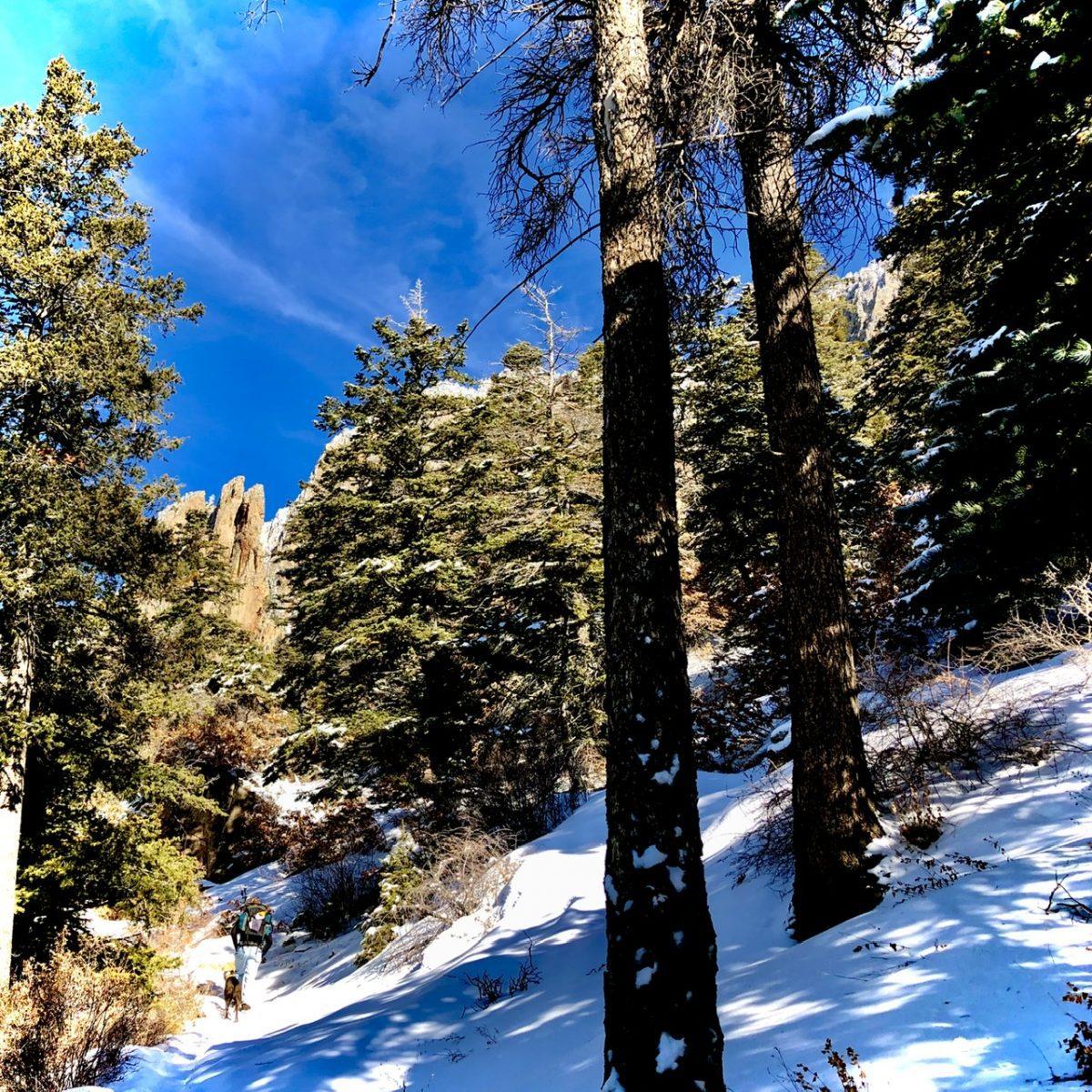La Luz Trail, Sandia Mountain Albuquerque, New Mexico